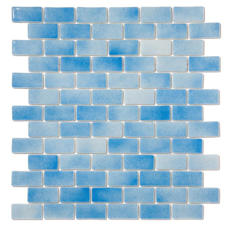 Pool Glass Mosaic BP-502 (25x50mm)